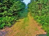 39668 Elbow Lake Road - Photo 13