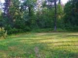 39668 Elbow Lake Road - Photo 14
