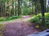 39668 Elbow Lake Road - Photo 18