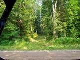 39668 Elbow Lake Road - Photo 4