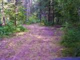 39668 Elbow Lake Road - Photo 5