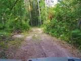 39668 Elbow Lake Road - Photo 8