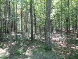 xxx White Pines Trail - Photo 1