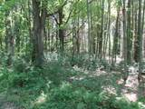 xxx White Pines Trail - Photo 2