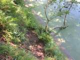 xxx White Pines Trail - Photo 21