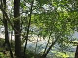 xxx White Pines Trail - Photo 28