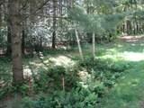 xxx White Pines Trail - Photo 32