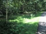 xxx White Pines Trail - Photo 33