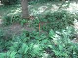 xxx White Pines Trail - Photo 34
