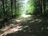 xxx White Pines Trail - Photo 4