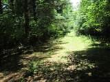 xxx White Pines Trail - Photo 5