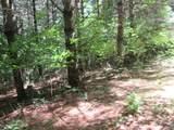 xxx White Pines Trail - Photo 6
