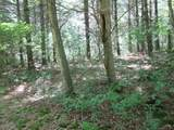 xxx White Pines Trail - Photo 7
