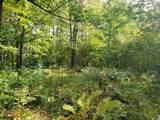41286 Yellow Birch Lane - Photo 2