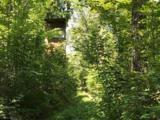 35510 592nd Lane - Photo 6