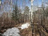 6515 Voyageurs Trail - Photo 11