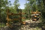 6515 Voyageurs Trail - Photo 21