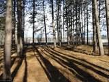 6515 Voyageurs Trail - Photo 4