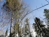 6515 Voyageurs Trail - Photo 9