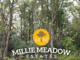 4008 Millie Meadow Drive - Photo 1