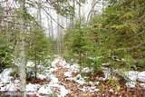 XYZ Deer Path Drive - Photo 39