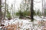 XYZ Deer Path Drive - Photo 40