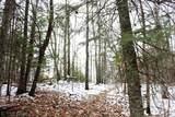 XYZ Deer Path Drive - Photo 42