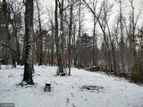TBD White Pine Drive - Photo 10