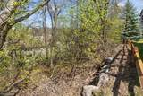 1497 Pinetree Pass - Photo 60
