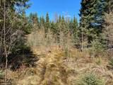 XXX Permit Trail - Photo 6