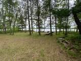 13859 Bald Eagle Trail - Photo 5