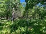 TBD Crescent Ridge Trail - Photo 6