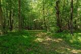 12913 Dobbins Road - Photo 6