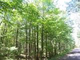Xxx Bear Lake Road - Photo 2