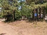 30696 Barkwood Trail - Photo 2