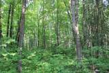 xxx Navillus Forest Land - Photo 9