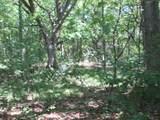 xxx White Pines Trail - Photo 12
