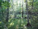 Lot 5 Blk 1 Falling Leaf Trail - Photo 4