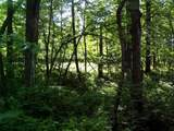 Lot 8 Blk 1 Falling Leaf Trail - Photo 1