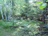 Lot 9 Blk 1 Falliong Leaf Trail - Photo 2