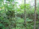 Lot 9 Blk 1 Falliong Leaf Trail - Photo 3