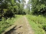 6184 Needleleaf Road - Photo 14