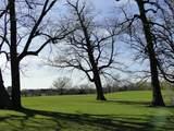 17455 Oak Hills Lane - Photo 6