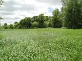 17775 County Road 40 - Photo 6