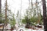 XYZ Deer Path Drive - Photo 17