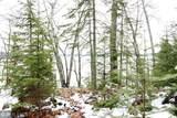 XYZ Deer Path Drive - Photo 19