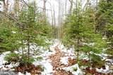 XYZ Deer Path Drive - Photo 20