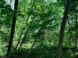 Lot 1 Buckshot Trail - Photo 3