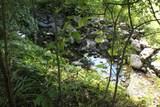600 Willow Creek Lane - Photo 21