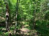 Lot 1 Buckshot Trail - Photo 2